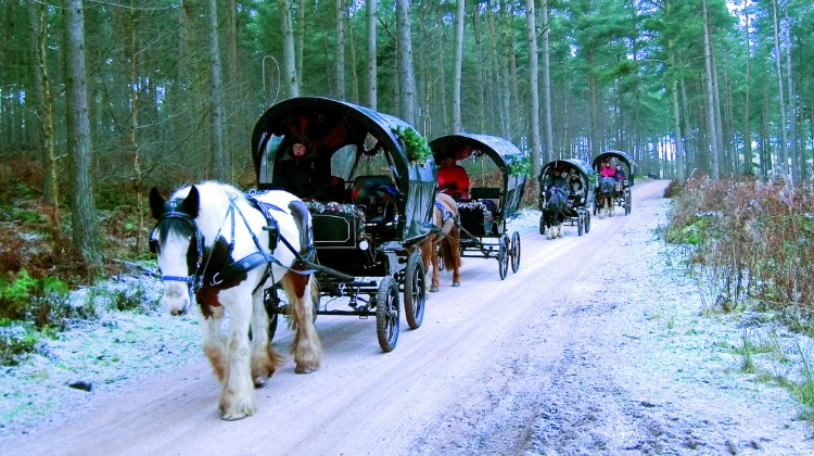 Xmas carriages