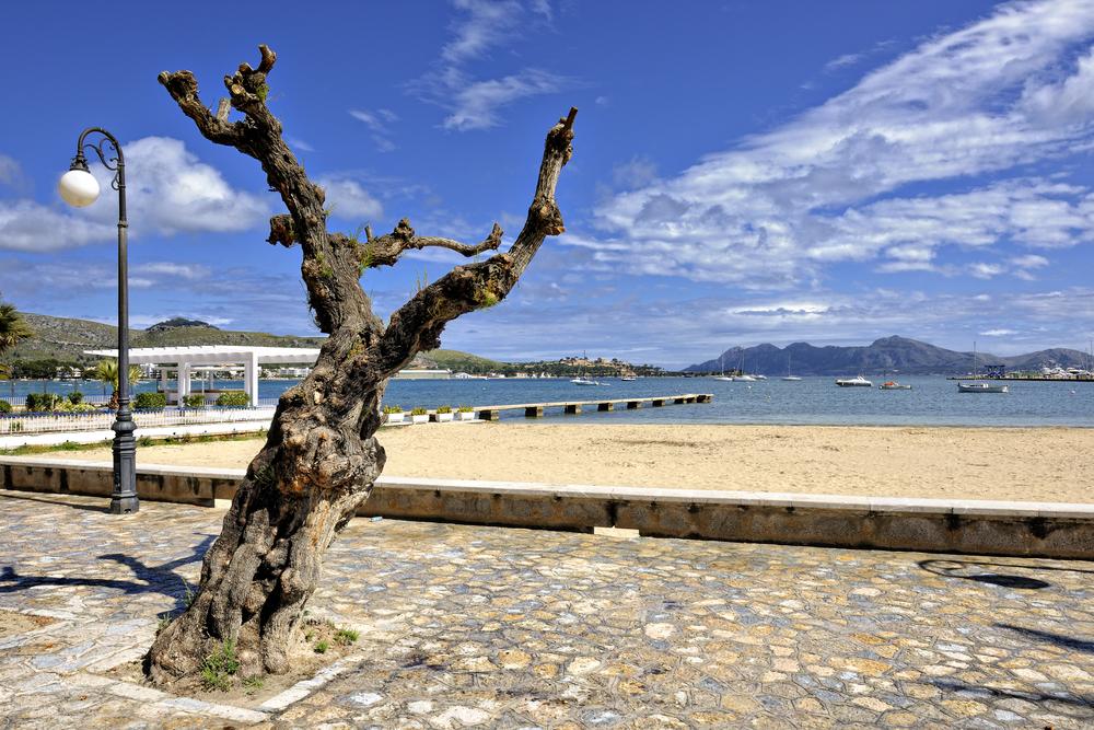 Port de Pollensa, Mallorca
